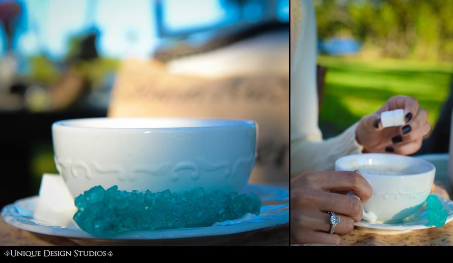 Miami photographers-engagement session-unique- vizcaya- photography 17